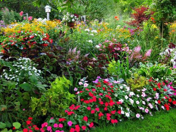 RMS-chefboston_shade-garden_s4x3_lg